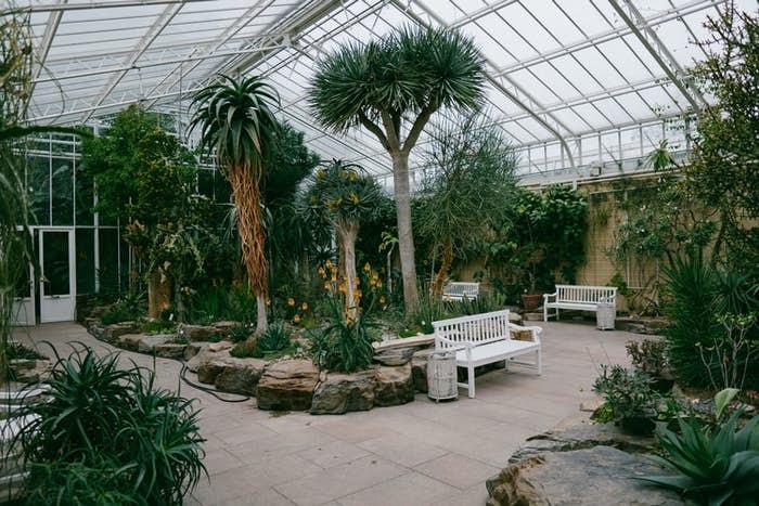 Botanical Garden Dubai