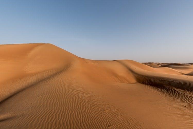 Sharjah Desert Park