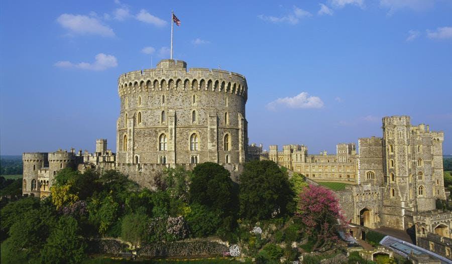 buckingham palace tour