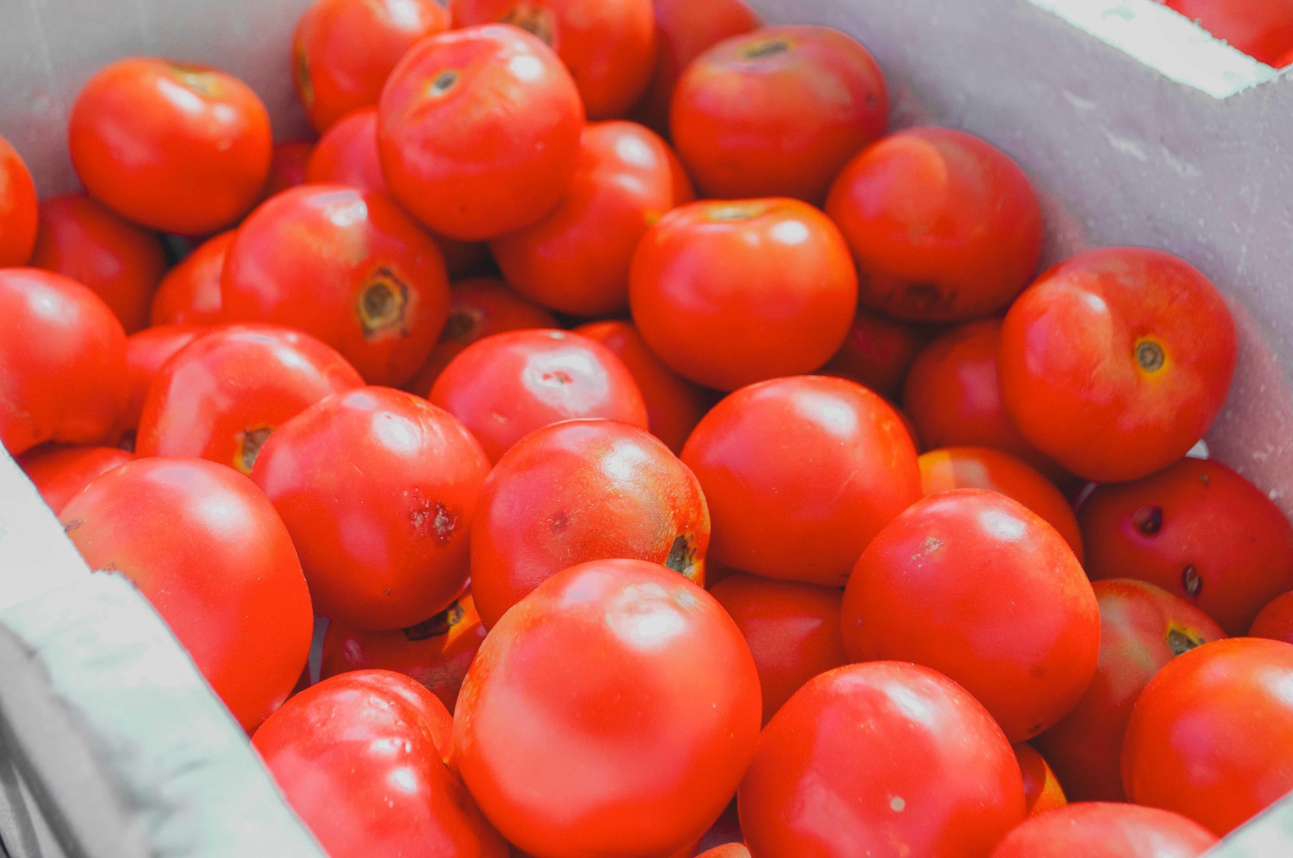 date ideas in melbourne farmers market