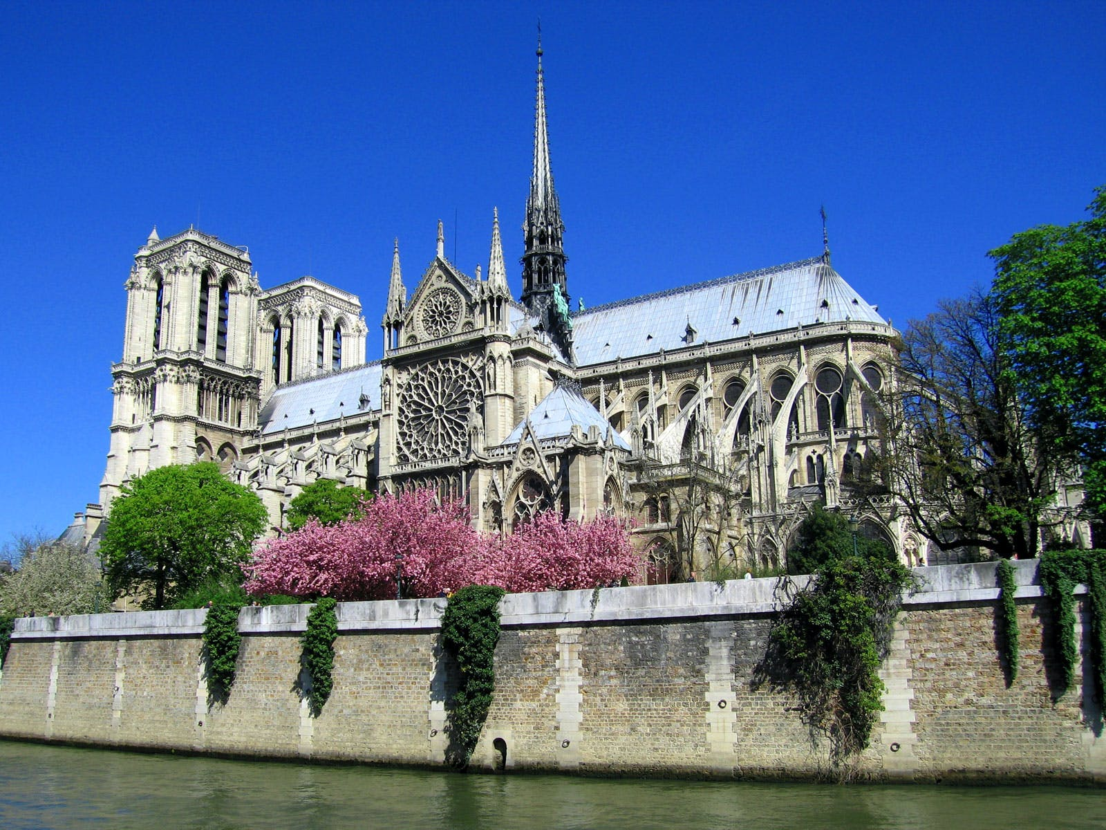 paris in may - notre dame cathedral