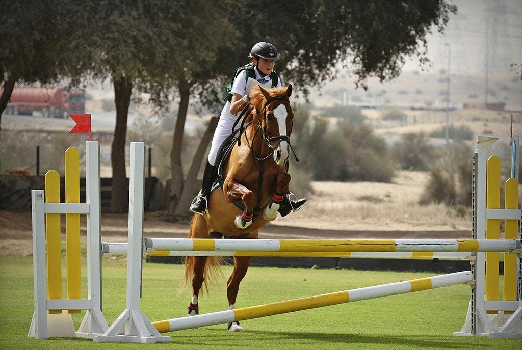 Dubai Horse Riding School - 2