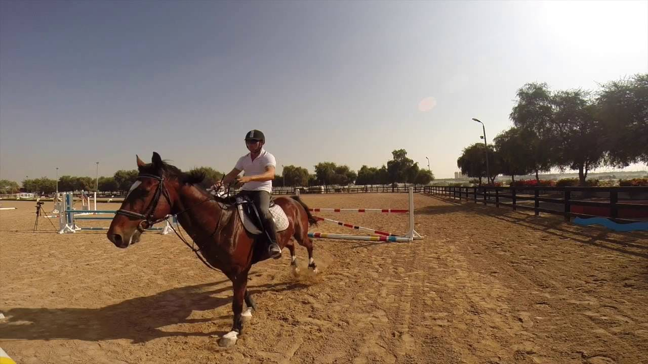Dubai Horse Riding School- 3