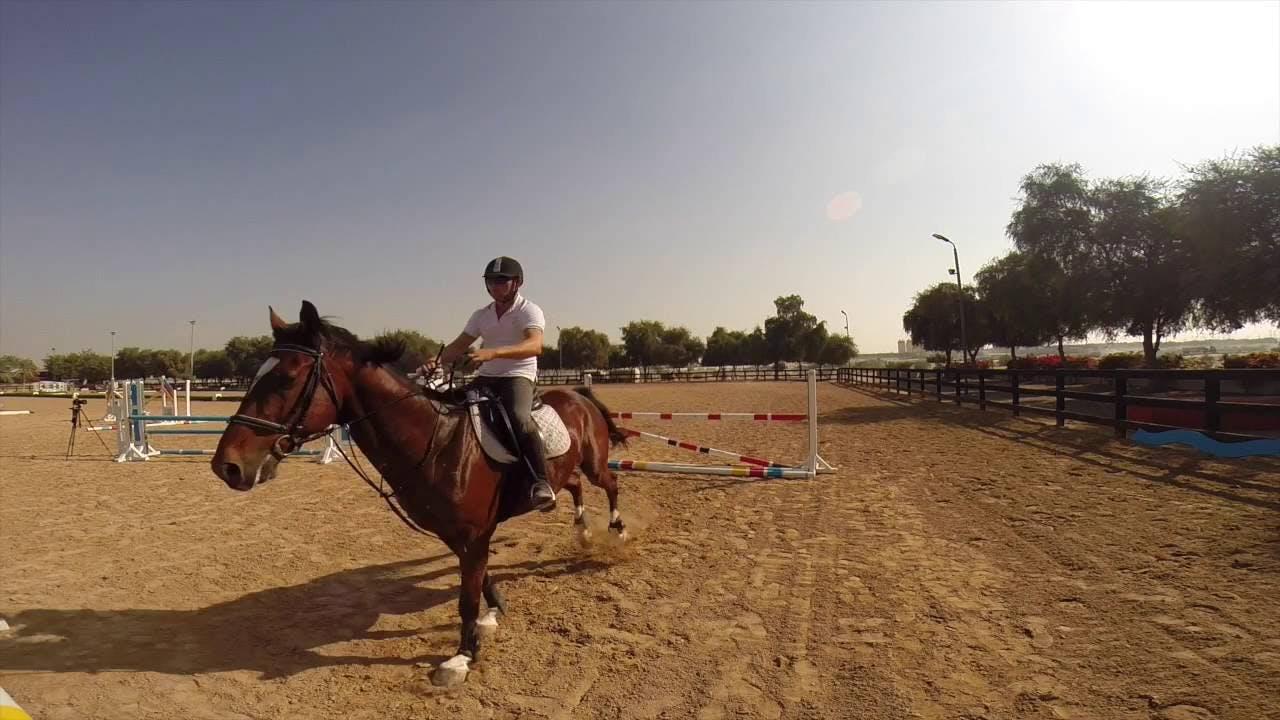Dubai Horse Riding School- 3