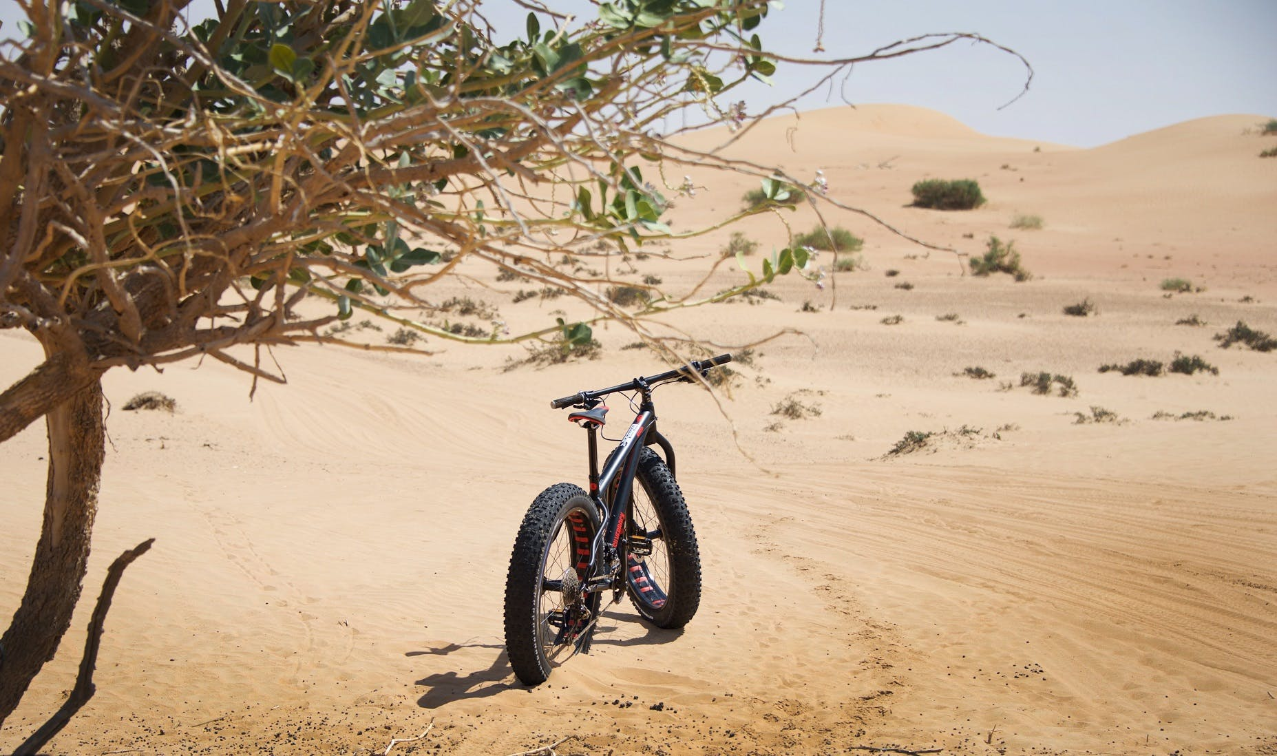 Adventure Activities in Dubai - Fat Tyre Biking- 3