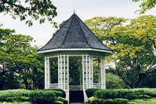 Best Things to do in Singapore - Singapore Botanic Gardens - 1