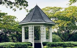 Singapore Botanic Gardens - 5 day Singapore itinerary