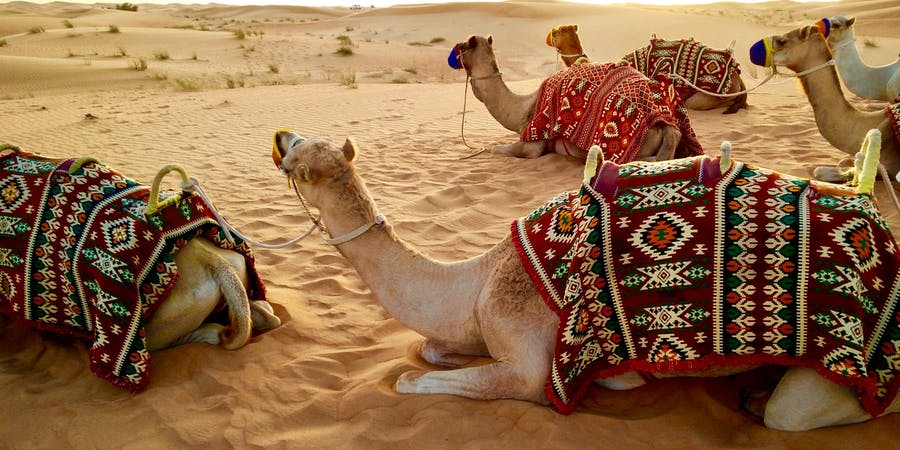 Dubai in april - louvre abu dhabi