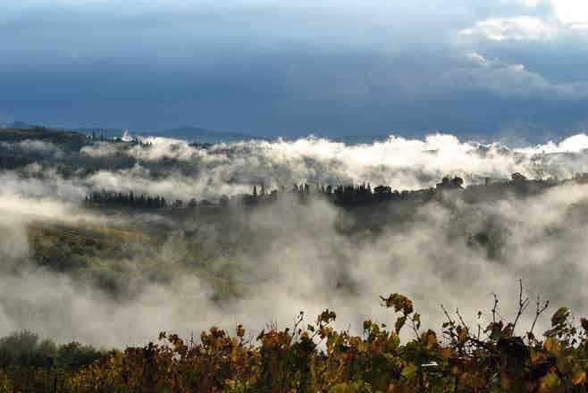 Chianti Region - Azienda Agricola Montefioralle