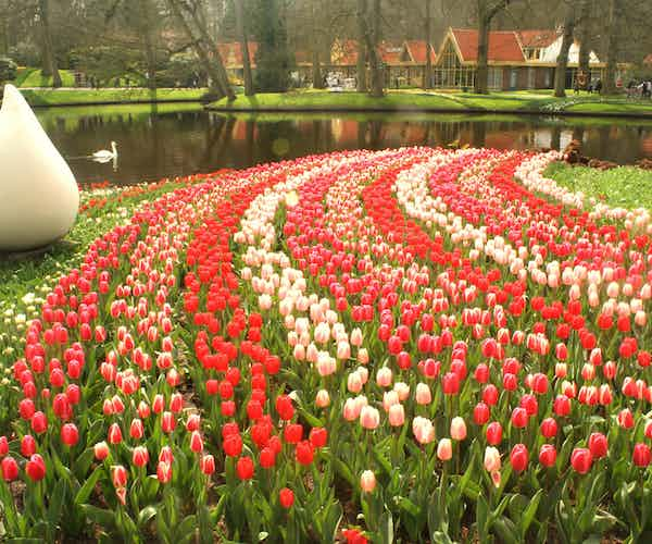 Amsterdam in March events