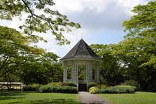 Best Things to do in Singapore - Singapore Botanic Gardens - 2