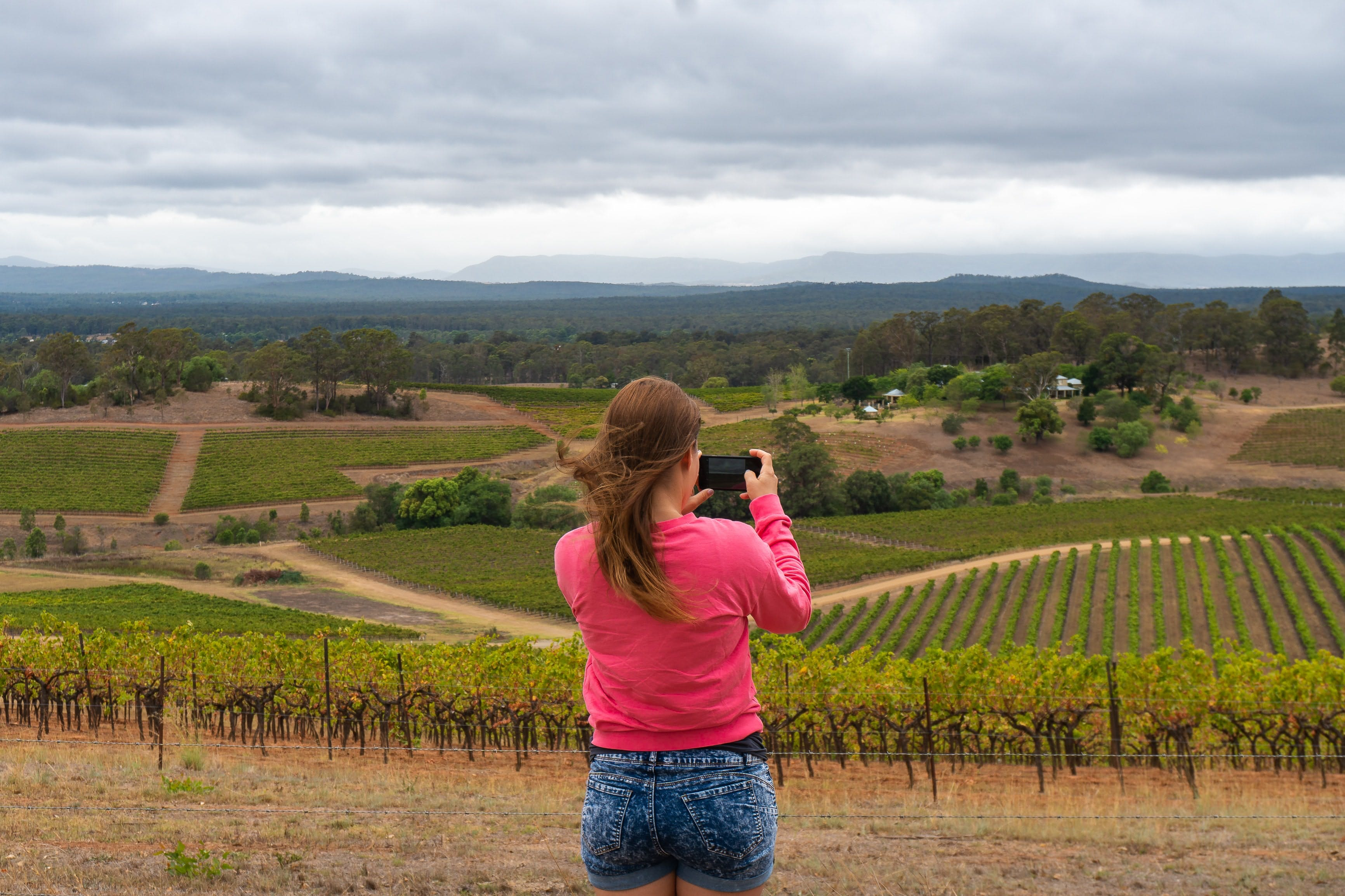 Sydney to the Hunter Valley Tour – The Perfect Day Trip Itinerary